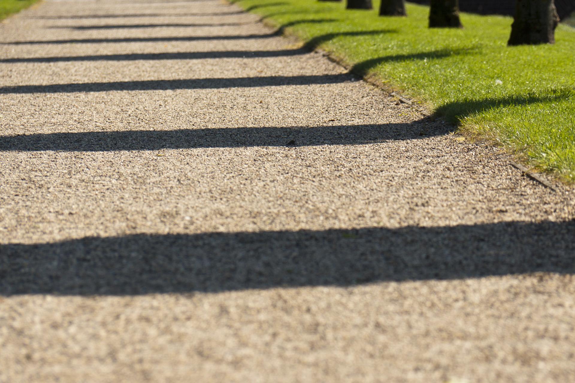 schatten: bäume am kiesweg | sarion.de